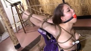Brunette hogtied HD