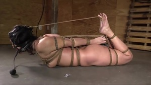 Stepmom hogtied HD